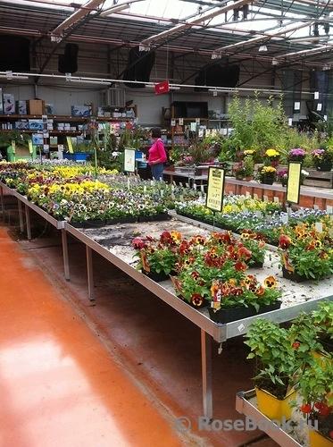 оби садовый каталог садовый рай: